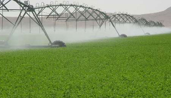 Allocation of 700B (IRR) to The Development of Irrigation Systems in North Khorasan